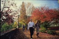 1980s photo 32 - ChapelWalk-Fall.jpg